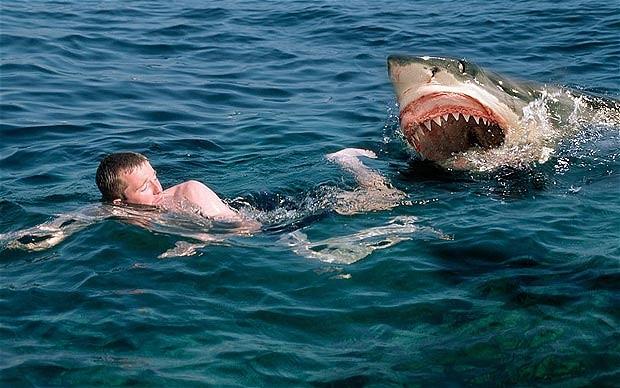 женской чем можно отпугнуть акулу от лодки туры Таиланд двоих