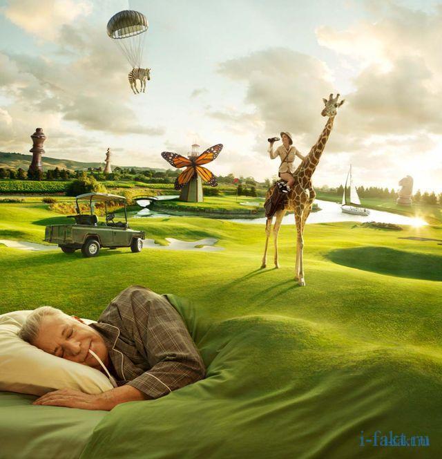 Интересные факты про сны