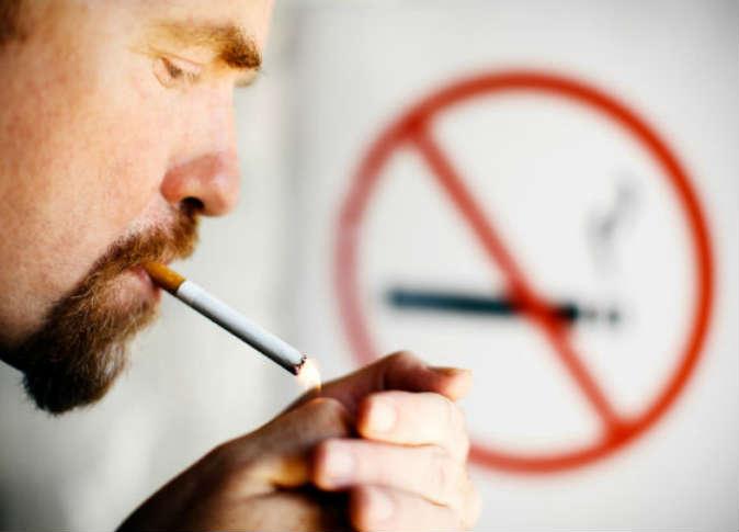 Интересные факты о табаке