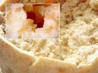 сыр касу марцу фото