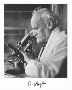 Ученый Фогт