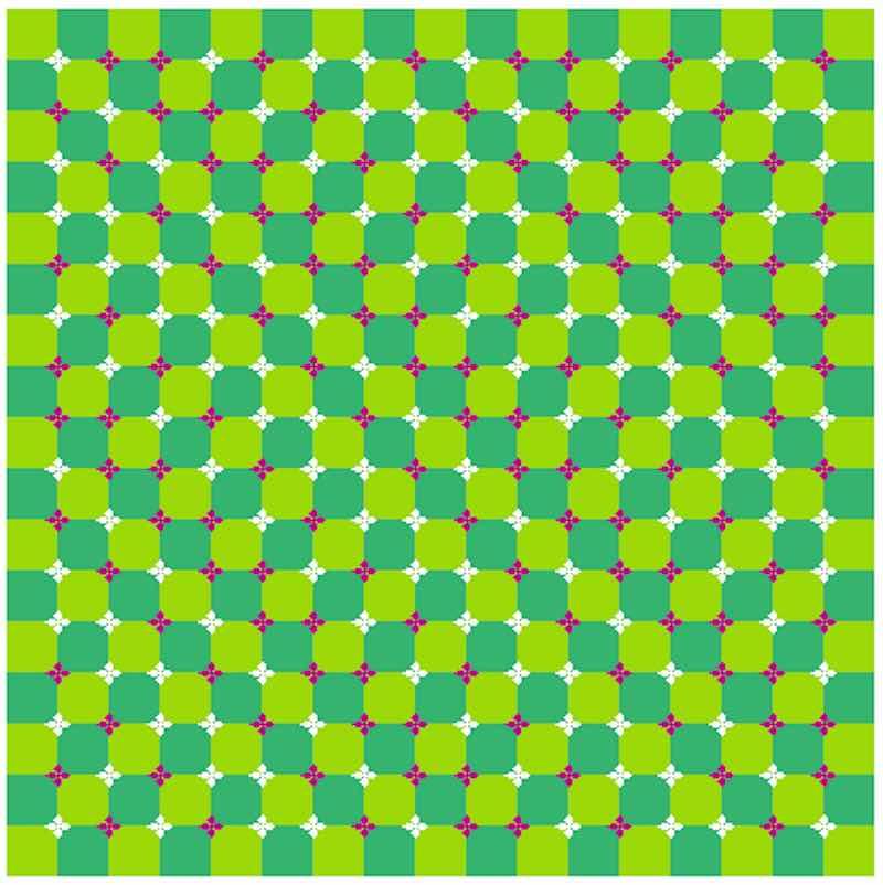Иллюзия живого квадрата