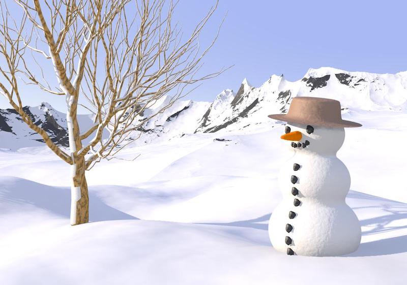Факты о снеговиках