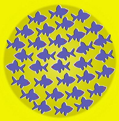 Иллюзия с рыбками
