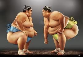 Интересные факты о сумо 2