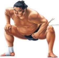 Интересные факты о сумо 1