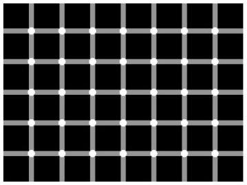 Сколько белых точек на картинке?
