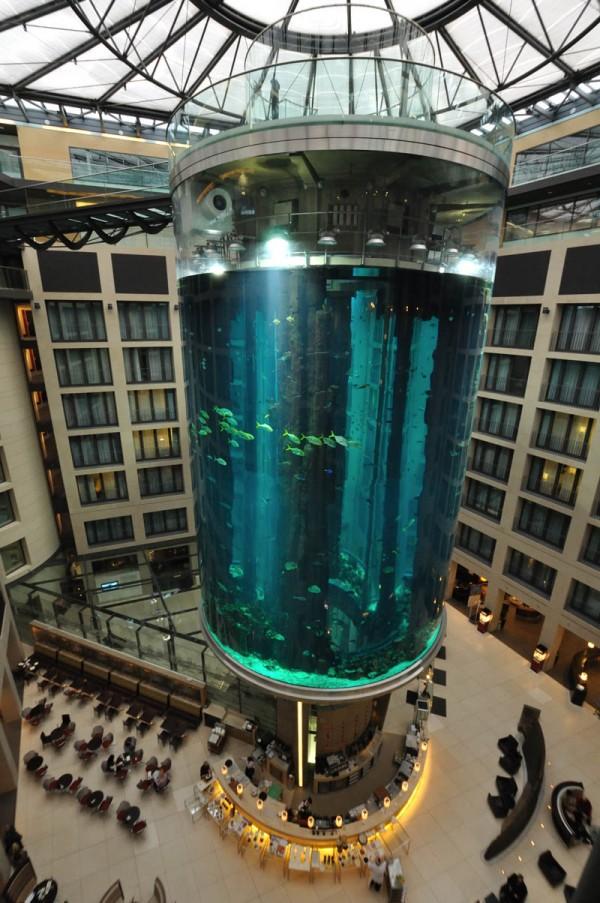 Самый большой цилиндрический аквариум в мире 1