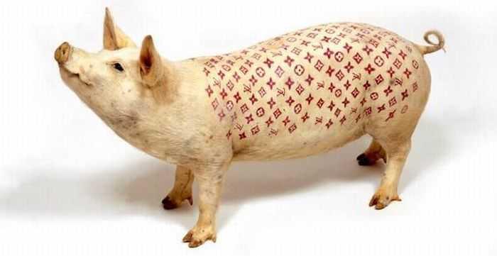 Салон татуировок для свиней 3