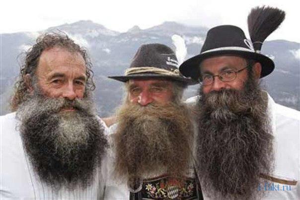 Интересные факты о бороде
