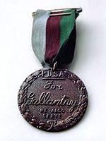 Медаль Марии Дикин - воинская награда для животных
