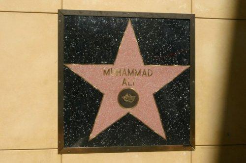Интересные факты о звездах голливудской Аллеи Славы 10