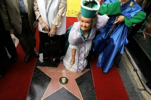 Интересные факты о звездах голливудской Аллеи Славы 5