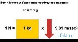 Чем отличается вес от массы