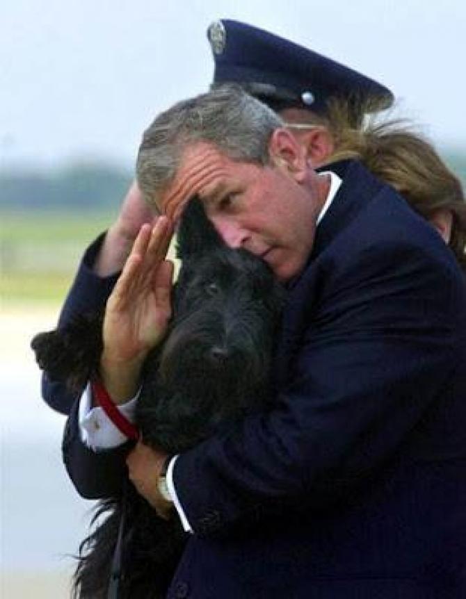 Буш воинское приветствие