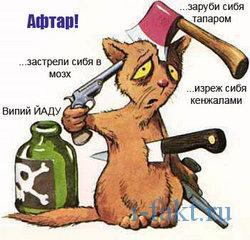 Как блогеры американца учили албанскому языку.