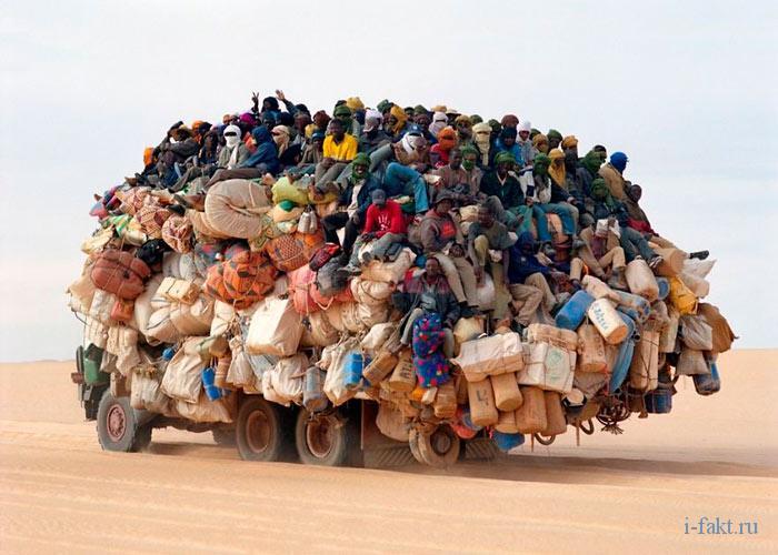 Мигрант, иммигрант или эмигрант