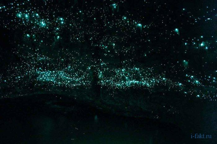 Пещера со светляками