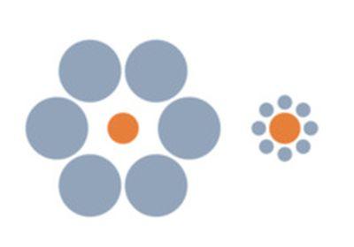 иллюзия размер кругов