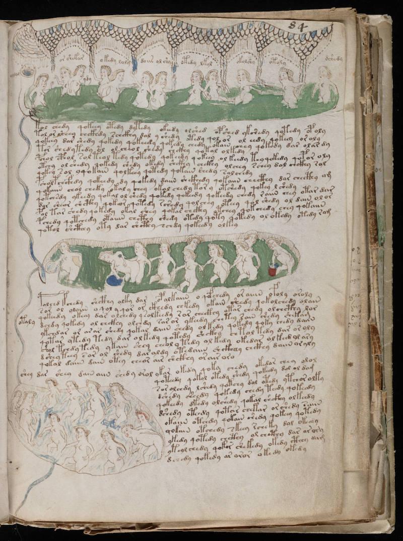 Манускрипт Войнича - самая загадочная рукопись в мире 3