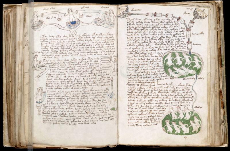 Манускрипт Войнича - самая загадочная рукопись в мире 1