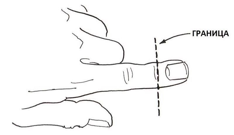 Регенерация пальца человека