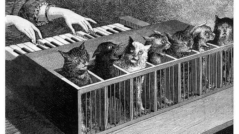 Кошачье фортепиано