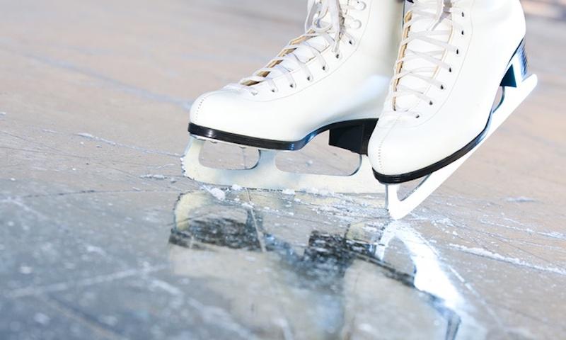 Факты о коньках