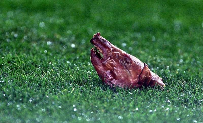 Что футбольные фанаты бросают на поле.