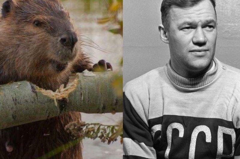 Интересные прозвища советских футболистов.
