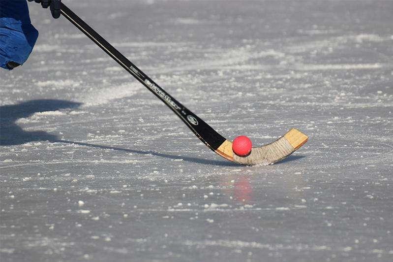 Интересные факты о хоккее с мячом