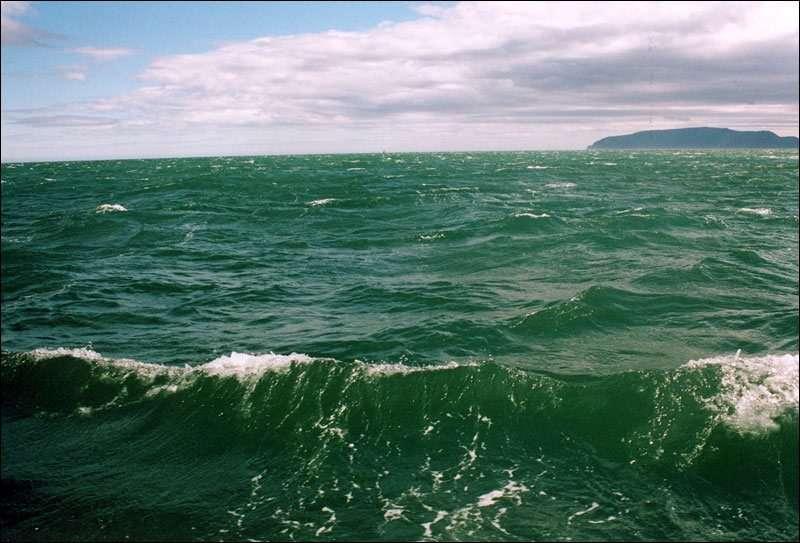 Интересные факты об Охотском море