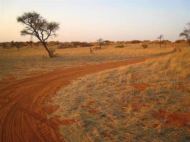 Интересные факты о пустыне Калахари